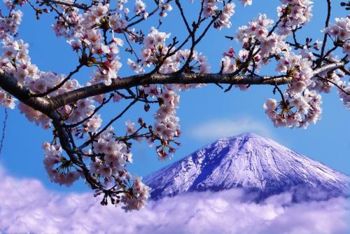 富士山 日本一