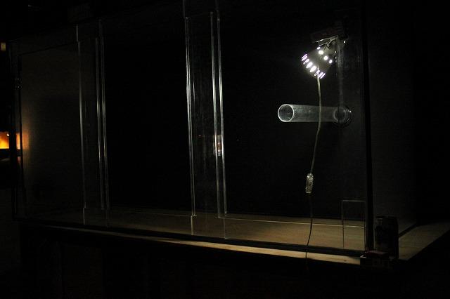 夜に佇む水槽
