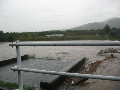 台風15号2011.9.20  ドブ川から氾濫