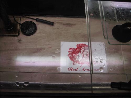 水槽の下にシークレット模様配置