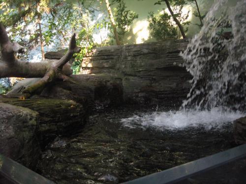 4階の滝ツボ