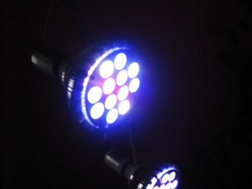 LEDランプ 色