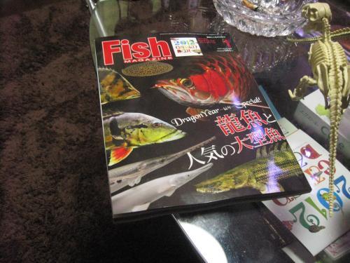 フィッシュマガジン 1月号 最新刊 2011年12月10日発売