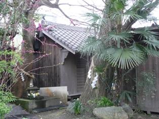 4月5日 MY神社
