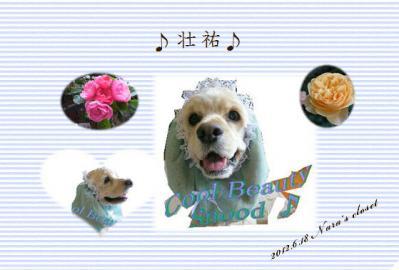 120619sousuke4.jpg