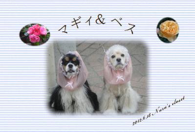 20120619マギィ&ベス