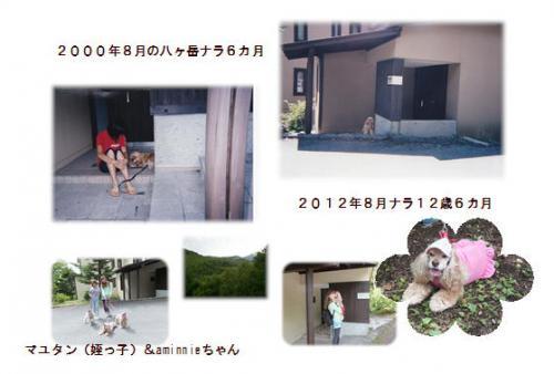 20120809八ヶ岳