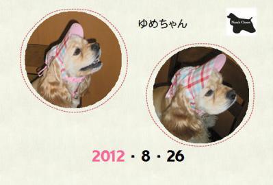 20120826ゆめ4