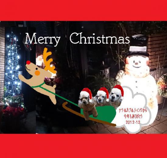 2012クリスマスカード7