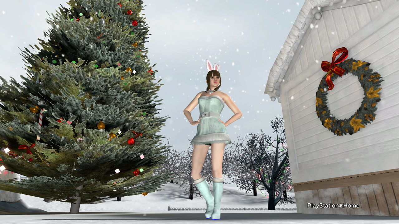 PlayStation(R)Home Picture 2013-12-06 01-08-47