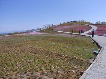 茶臼山10