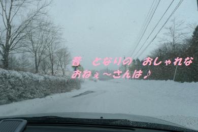 茶臼山2013-1