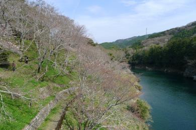 桜淵公園11