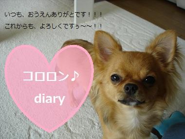 DSC05961.jpg