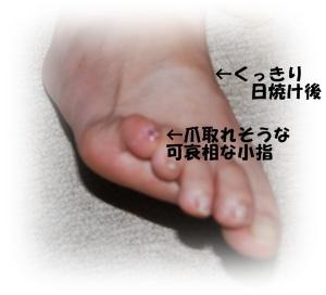 DSC_460.jpg