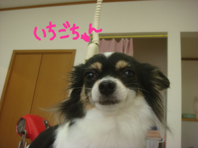 DSC011421.jpg