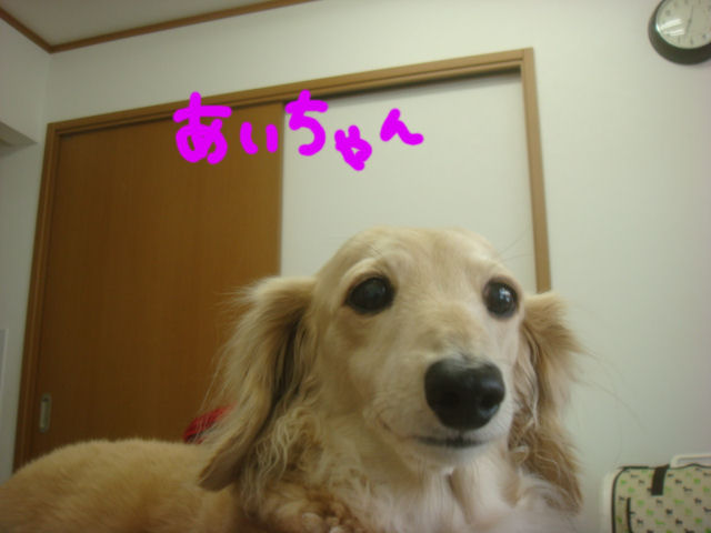 DSC017261.jpg