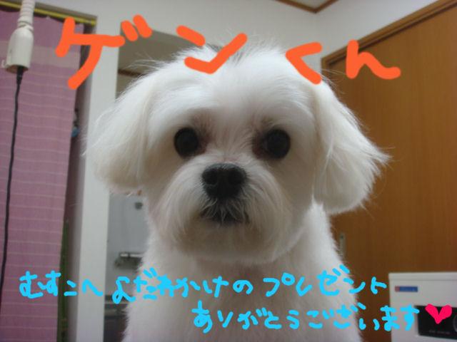 DSC093651.jpg