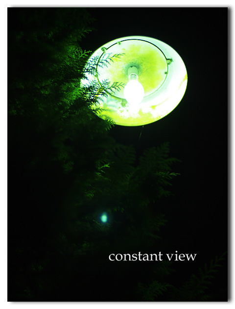 GREENLIGHT OF THE EARTH