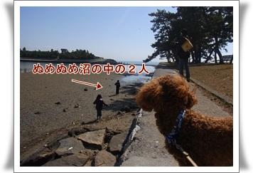 2011_0313_134019-R1008453.jpg