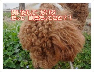 2011_0322_133246-R1008658.jpg