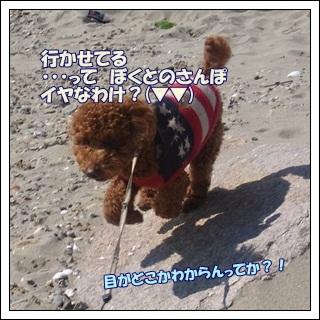 2011_0327_141741-R1008680.jpg
