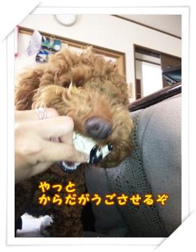2011_0502_140023-DVC00582.jpg