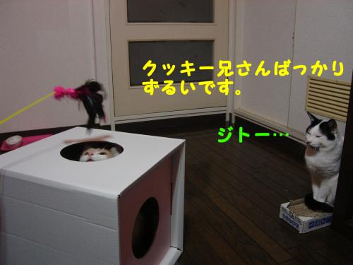 辷ェ縺ィ縺趣シ・-+繧ウ繝斐・_convert_20101129223927