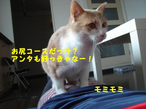 繝槭し繧ク・狙convert_20110213213424