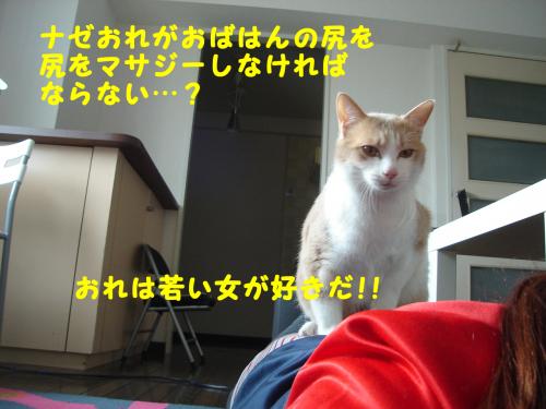 陬上・鬘費シ狙convert_20110216185258