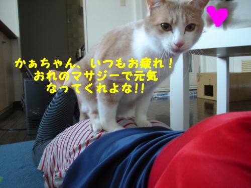陬上・鬘費シ農convert_20110216185409