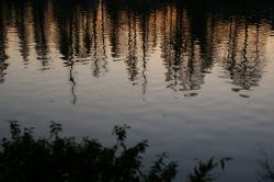 20111230-5.jpg