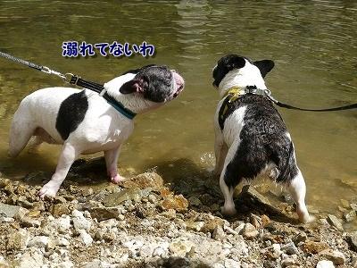 溺れてる? (3)