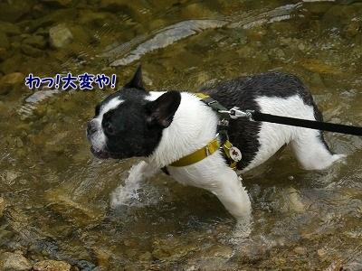 おぼれる (1)