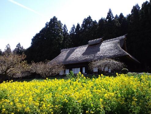 それぞれの春(小川)