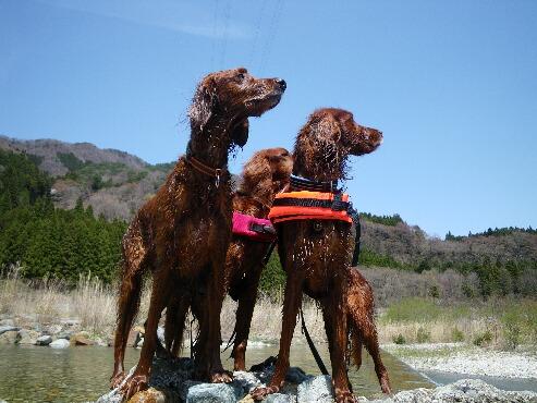 三人で川遊び