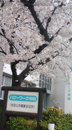 20100401134139.jpg