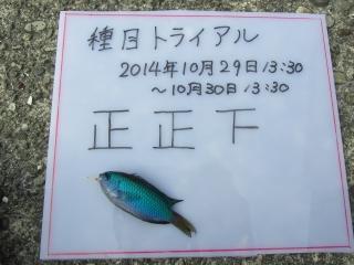 15_13th.jpg
