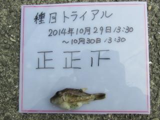 16_14th.jpg