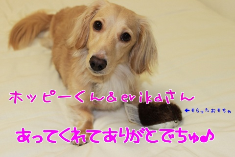 4pSRk.jpg