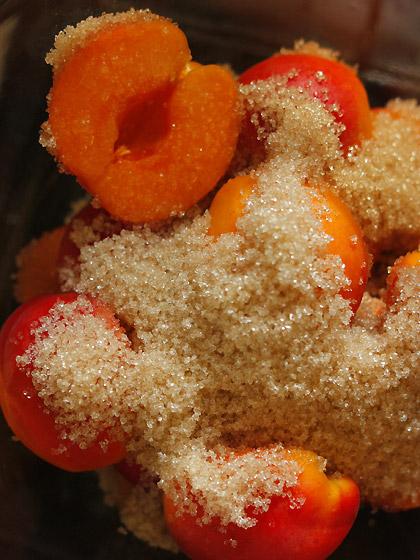 杏のグラニュー糖まぶし