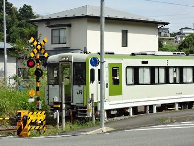 DSC00139.jpg