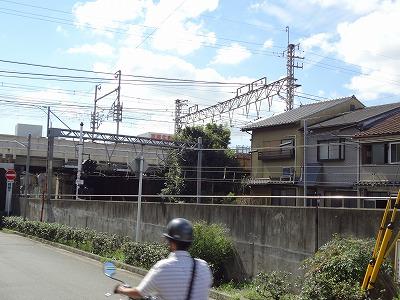 DSC01937.jpg