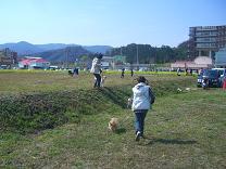 2010-3 147