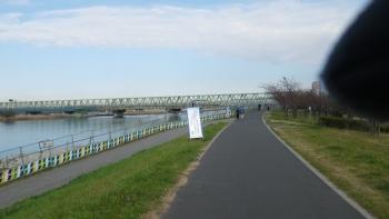 008いつもの市川橋が見えてきました、工事のため右岸に渡ります