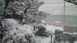家、雪、玄関にて