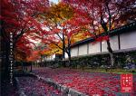 autumn_2012_01_img_001.jpg