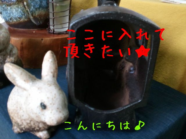 2011-06-07 16.36.44