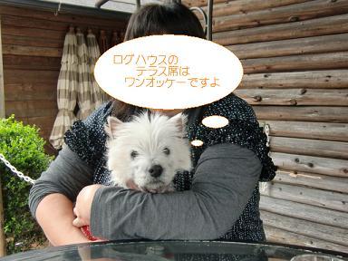 004_20120424010156.jpg