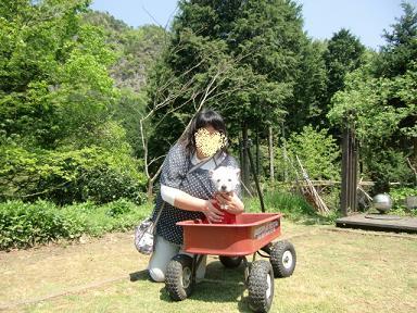 Js hill garden3